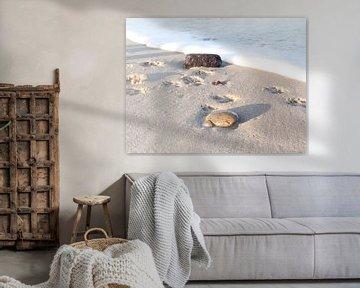 Strandwandeling van Danny Tchi Photography