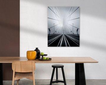 Erasmus-Brücke im Nebel von Jeroen van Dam