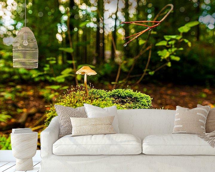 Sfeerimpressie behang: Een eenzame Paddestoel van Brian Morgan
