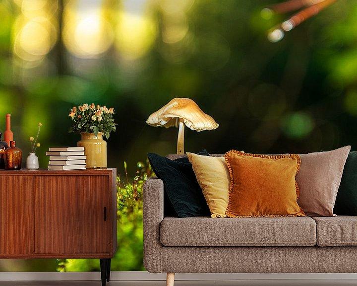 Sfeerimpressie behang: Eenzame Paddestoel in de Zon van Brian Morgan