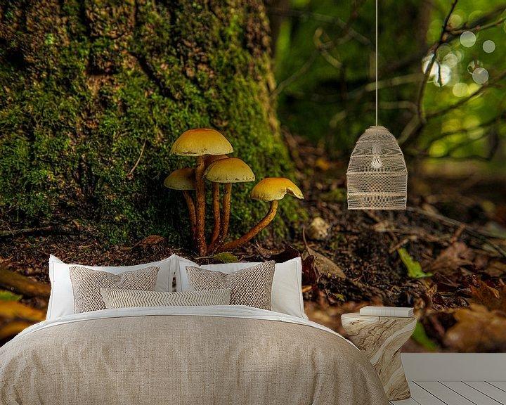 Impression: Champignons sur le sol de la forêt sur Brian Morgan
