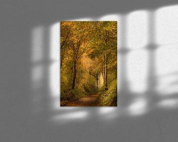 Waldweg im Herbst von John van de Gazelle