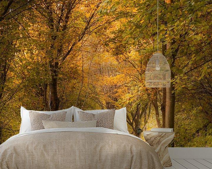 Beispiel fototapete: Waldweg im Herbst von John van de Gazelle