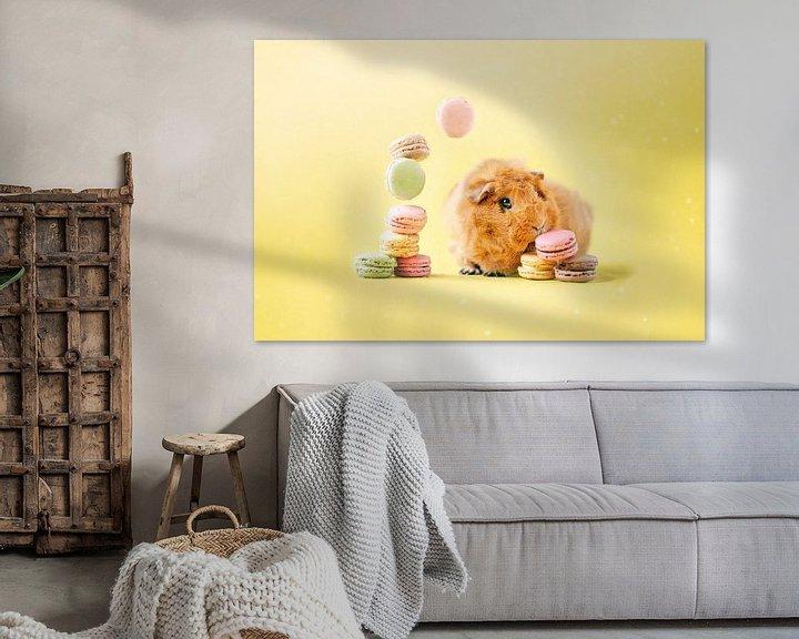 Sfeerimpressie: Cavia Macarons van Marloes van Antwerpen