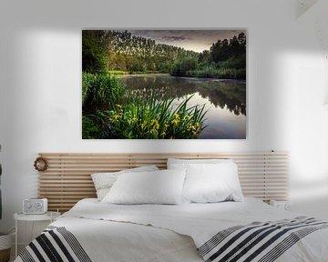 By the lake van Wim van D