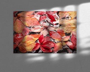 herfstbladen van Heinz Trebuth