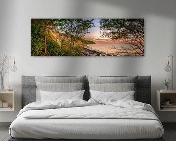 Steile kust en strand bij Boltenhagen aan de Oostzee in Noord-Duitsland van Fine Art Fotografie