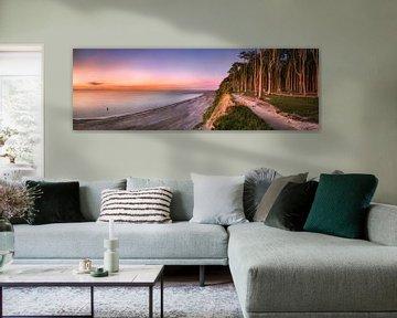 Steile kust met bos en strand aan de Oostzee in Mecklenburg Vorpommern van Fine Art Fotografie