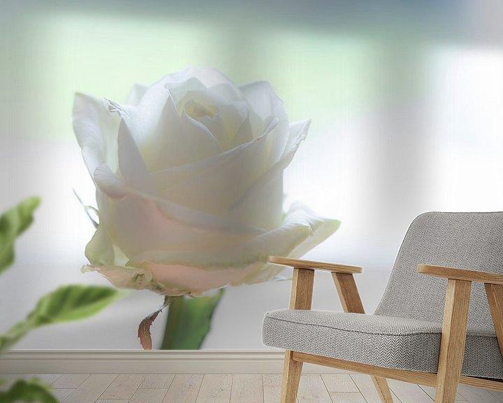 Sfeerimpressie behang: Witte Roos van hetty'sfotografie