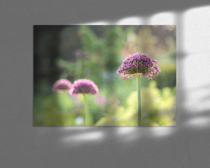 Impression: Gros plan sur les fleurs violettes sur Tomasz Baranowski