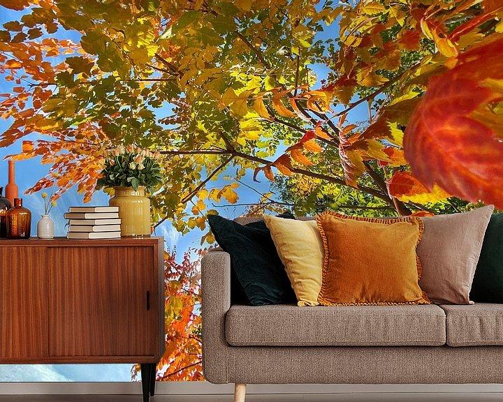 Sfeerimpressie behang: Kleurrijke herfstbladeren van Markus Jerko