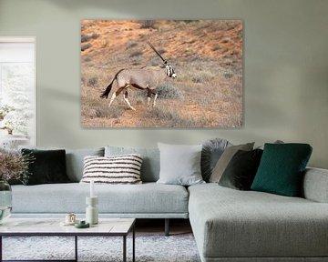 oryx-antilope van Angelika Stern