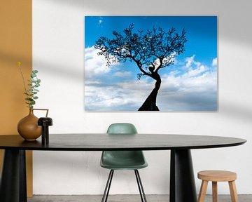 Vrouwfiguur in boom tegen prachtige achtergrond van Bianca ter Riet