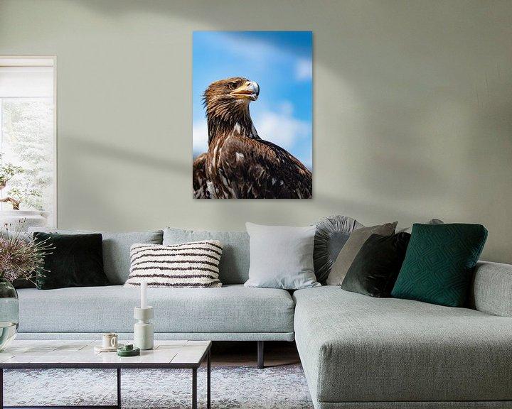 Sfeerimpressie: Eagle Eye van Jessica de Vries