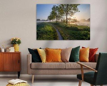 Lever de soleil lors d'un voyage sous la rosée le long de la Lys à Wevelgem - Flandre occidentale sur Fotografie Krist / Top Foto Vlaanderen