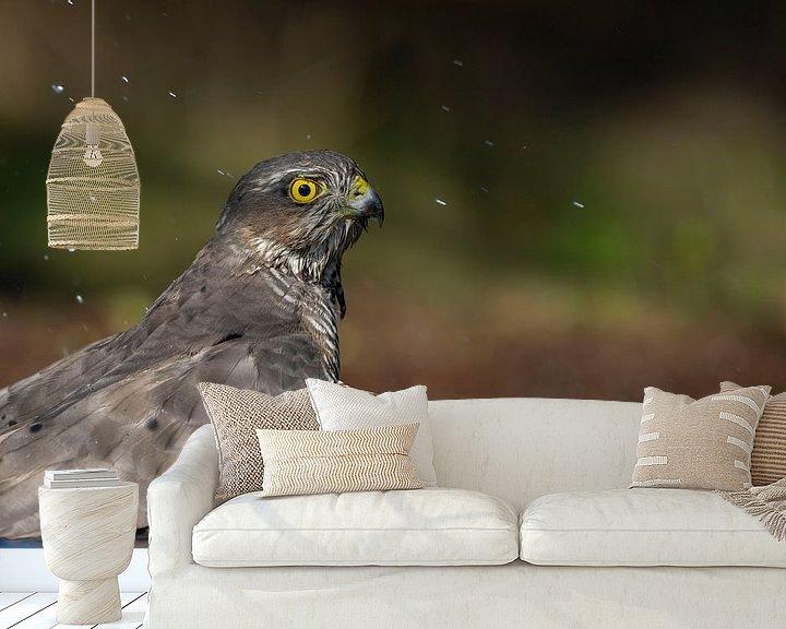 Sfeerimpressie behang: Sperwer Roofvogel van Rando Kromkamp