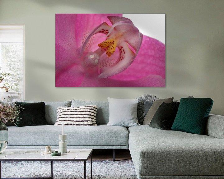 Sfeerimpressie: Orchidee hart van Tanja van Beuningen