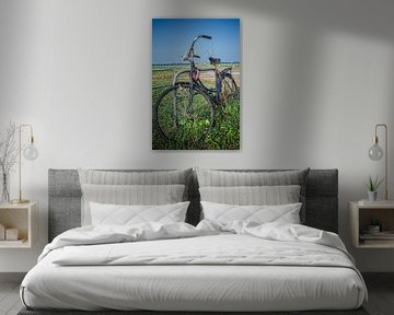 Verlaten fiets van Don Fonzarelli