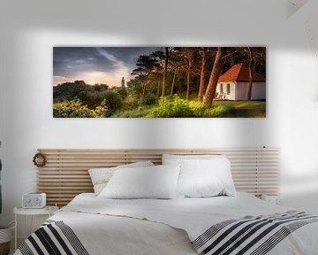 Vuurtoren en houten huis in het bos op het eiland Hiddensee van Fine Art Fotografie