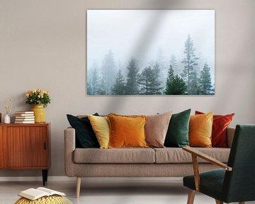 Boom toppen in de mist. van Axel Weidner