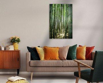 Bambus von Zsa Zsa Faes