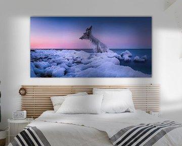 Winter aan de Oostzee van Voss Fine Art Fotografie