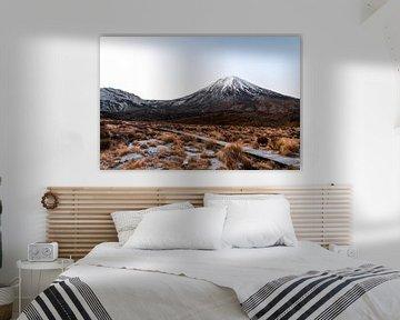 Vroege ochtend wandeling in de bergen(Mordor) Nieuw Zeeland, Tongariro crossing van Niels Rurenga