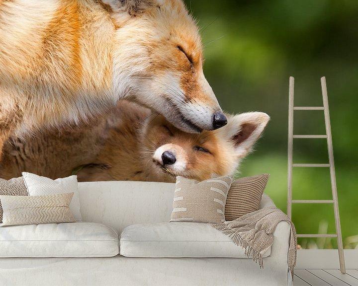 Impression: Red fox and her cub sur Menno Schaefer