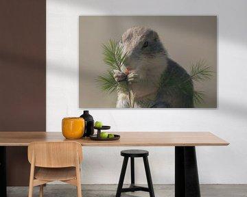 Eichhörnchen-Baby frisst eine Beere von Karin aan de muur