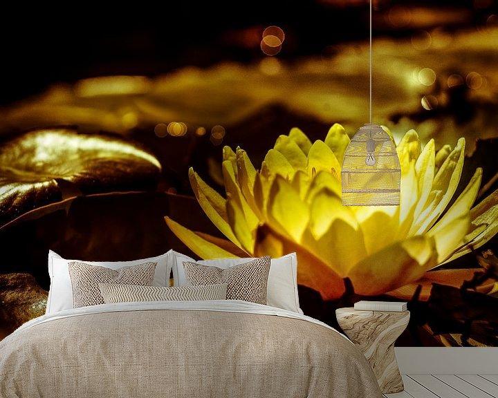 Beispiel fototapete: Seerose im Abendlicht von Udo Wanninger limitiete Auflage