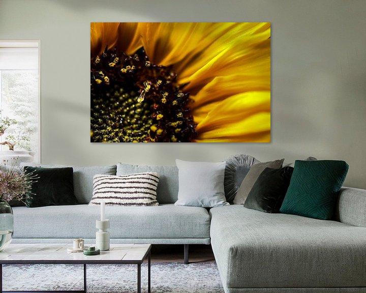 Beispiel: SonnenBlumen von Udo Wanninger limitiete Auflage