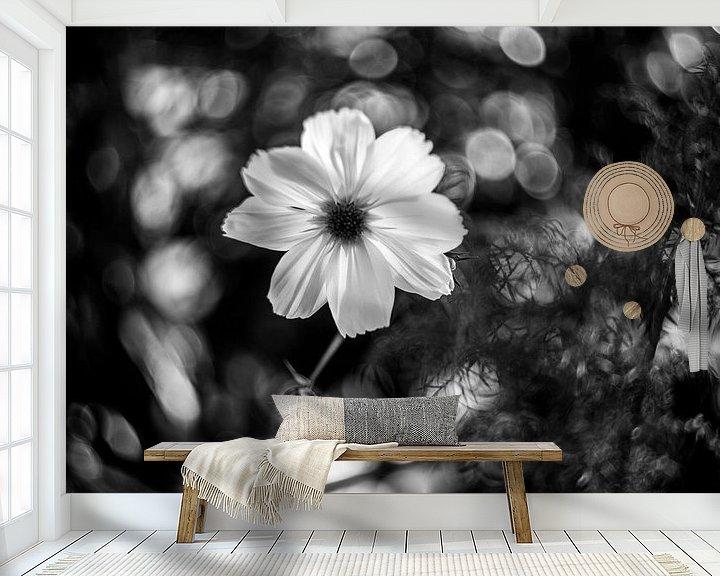 Beispiel fototapete: Blume von Udo Wanninger limitiete Auflage