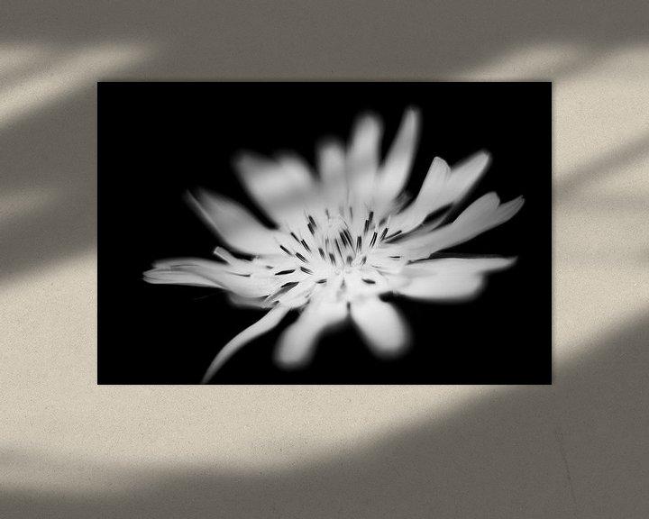 Beispiel: blüte von Udo Wanninger limitiete Auflage