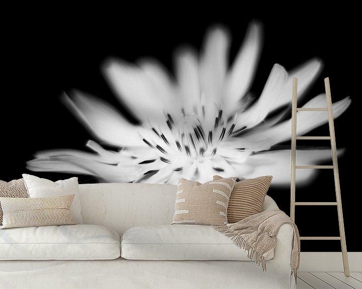 Beispiel fototapete: blüte von Udo Wanninger limitiete Auflage