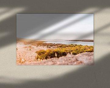 Zonsondergang op Fuerteventura, Canarische Eilanden van Simone Neeling