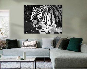 Tiger tiger burning bright: Close-up van een Siberische tijger van Koolspix