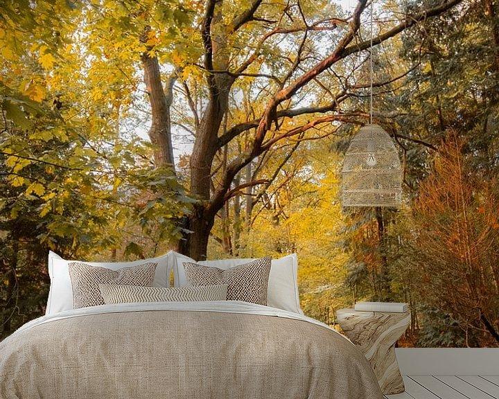 Beispiel fototapete: Herbst im Wald von Robbert Wille