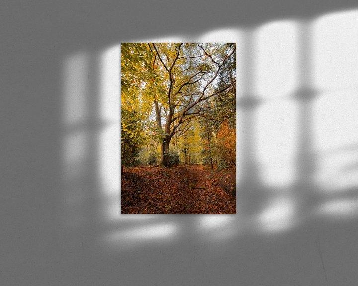 Beispiel: Herbst im Wald von Robbert Wille