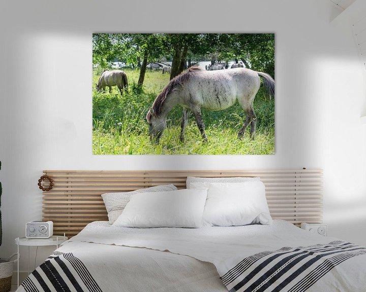 Beispiel: Weidendes Konik-Pferd von Diantha Risiglione