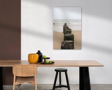 Strandpaaltjes van Zoutelande van Eline Langedijk