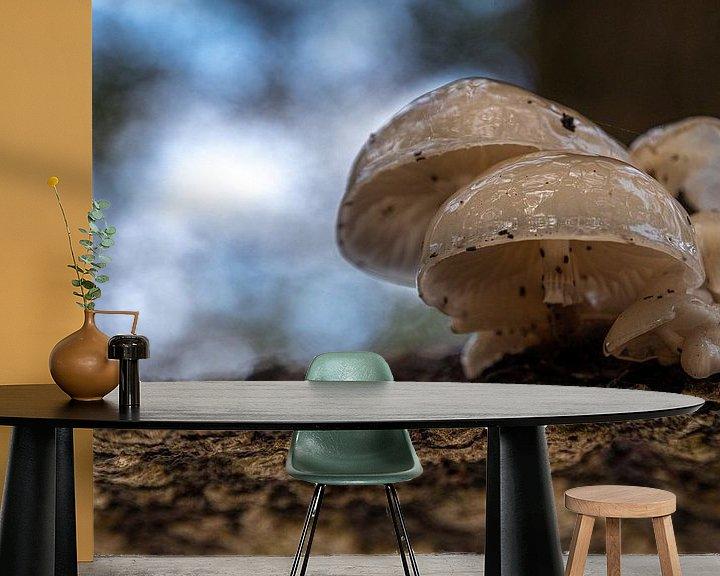 Sfeerimpressie behang: Paddenstoelenfamilie van Ingrid Aanen