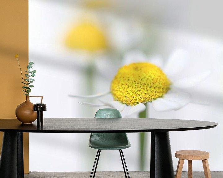 Sfeerimpressie behang: Kamille (2) (bloem, geel, licht, zomer) van Bob Daalder