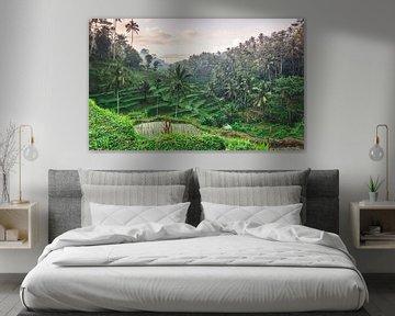 Prachtige rijstvelden op Bali (Indonesie). van Claudio Duarte