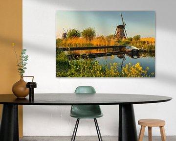 Windmolens bij zonsondergang, Kinderdijk, Nederland van Markus Lange