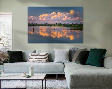 Natuurgebied 't Roegwold, Groningen van Henk Meijer Photography
