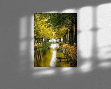 Herbst, Wald von Edwin Kooren