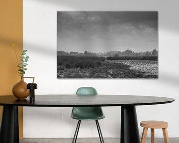 Landschaft schwarz-weiß von eric brouwer