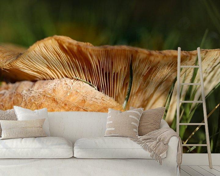 Sfeerimpressie behang: paddenstoel van Marieke Funke