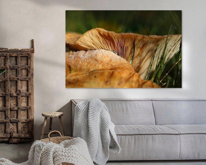 Sfeerimpressie: paddenstoel van Marieke Funke