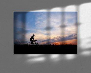 Radfahrer auf dem Deich (Radfahrer) von Caroline Lichthart